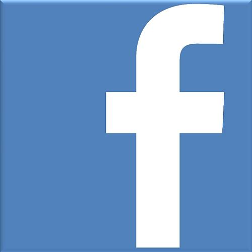Facebook logo white small